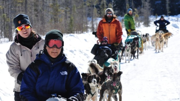 Participants from last year's dog sled expedition in Algonquin Park, Ont.