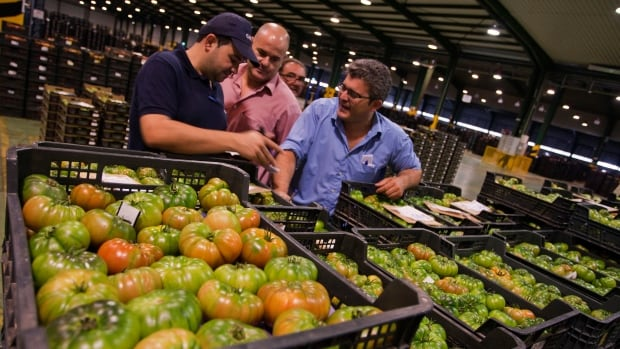 The cheap loonie has raised the price of imported groceries, so food delivery companies have responded by stuffing their boxes with local goods instead.