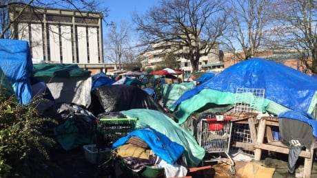 Victoria B.C. officers injured in tent city arrest, police report