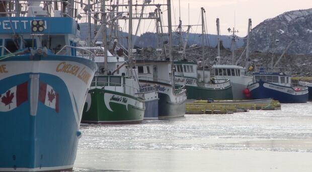 Shrimp boats Port de Grave