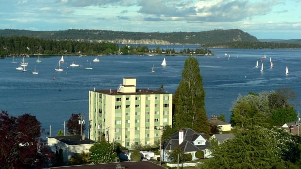 Sailboats cruise about in Nanaimo's harbour. More and more Vancouverites are calling Nanaimo home, Nanaimo Economic Development Corporation CEO John Hankins says.