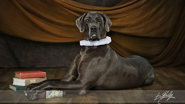Buffie Boily pet photos