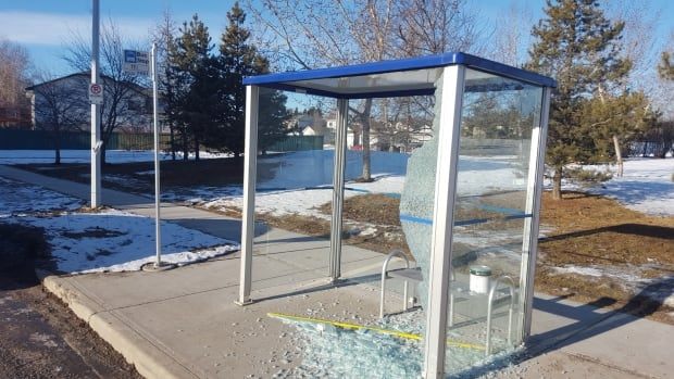 About 70 bus shelters were damaged in a vandalism spree over two weekends in February.