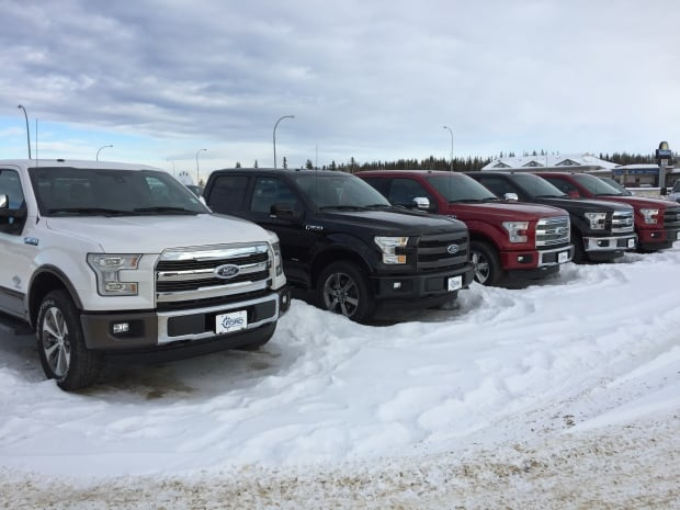 Trucks for sale at True North Ford