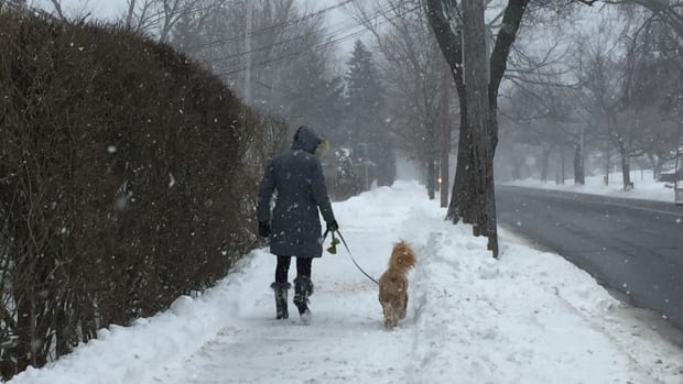 Environment Canada says snow will continue through the afternoon but it should clear in the Halifax area by this evening.