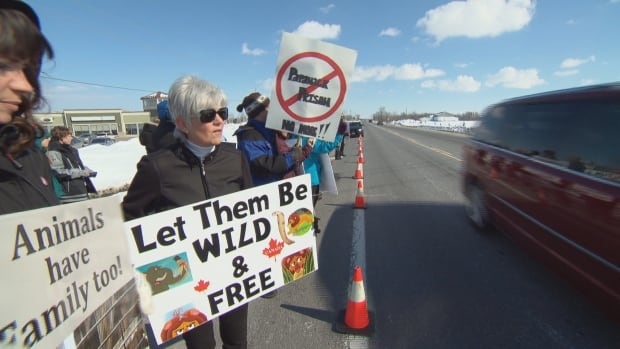 Papanack Zoo closure protest Sunday Wendover Ottawa March 6 2016