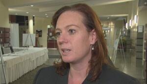 Lisa MacLeod Ottawa MPP Nepean hospital Civic campus public consultation March 7 2016