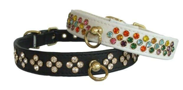 jewelled dog collar