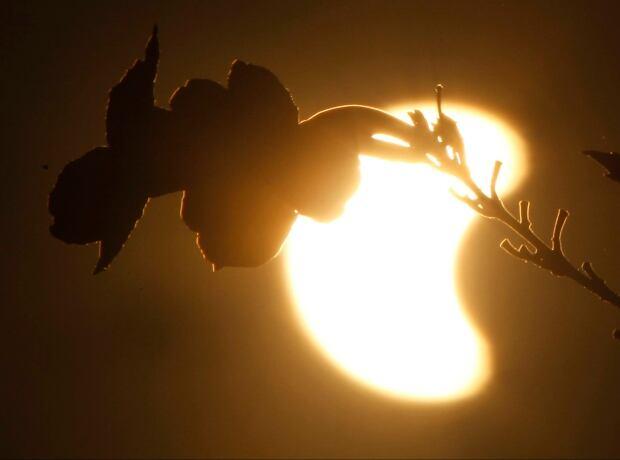 APTOPIX Cambodia Solar Eclipse