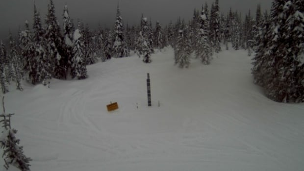 One person was killed after being caught in an avalanche Sunday in the popular Crowfoot mountain snowmobile area in B.C.'s Shuswap.