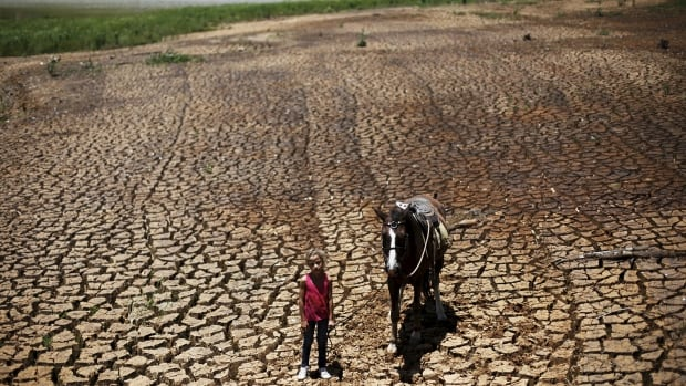 Paula, 7, poses with her horse on the cracked ground of Atibainha dam, part of the Cantareira reservoir, in Nazare Paulista, near Sao Paulo, Brazil, February 12, 2015. Average global temperatures last month were a record 1.35 degree Celsius (2.4 Fahrenheit) above normal for February.