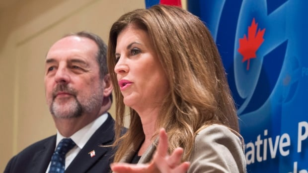 Interim Conservative Party Leader Rona Ambrose said Monday that Prime Minister Justin Trudeau should have brought his energy minister to Washington to press for pipeline projects.