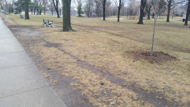 Toronto Withrow Park