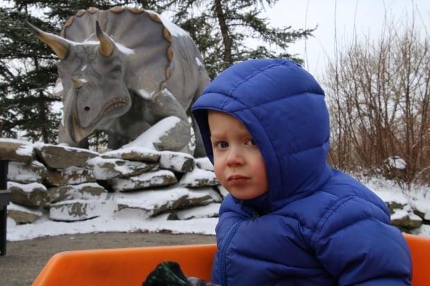 Dinosaurs Alive Calgary Zoo