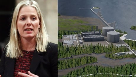 Pacific NorthWest LNG project decision by Ottawa coming today