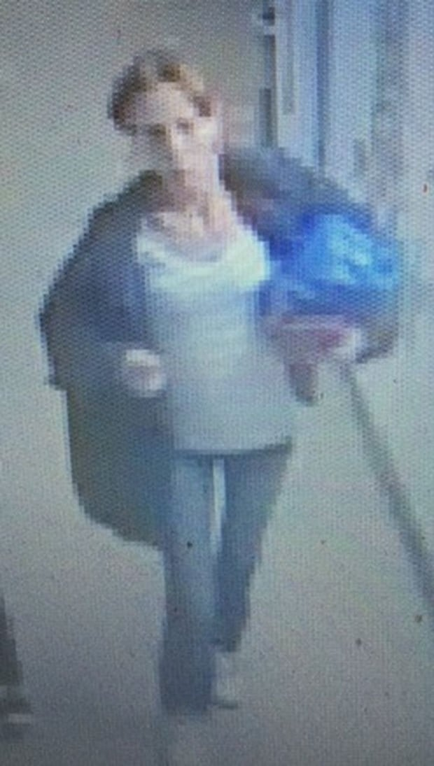 School theft suspect