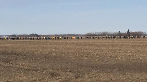Searchers line a field