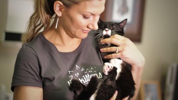 Shelly Roche's kitten, Cassidy, is missing his rear legs.