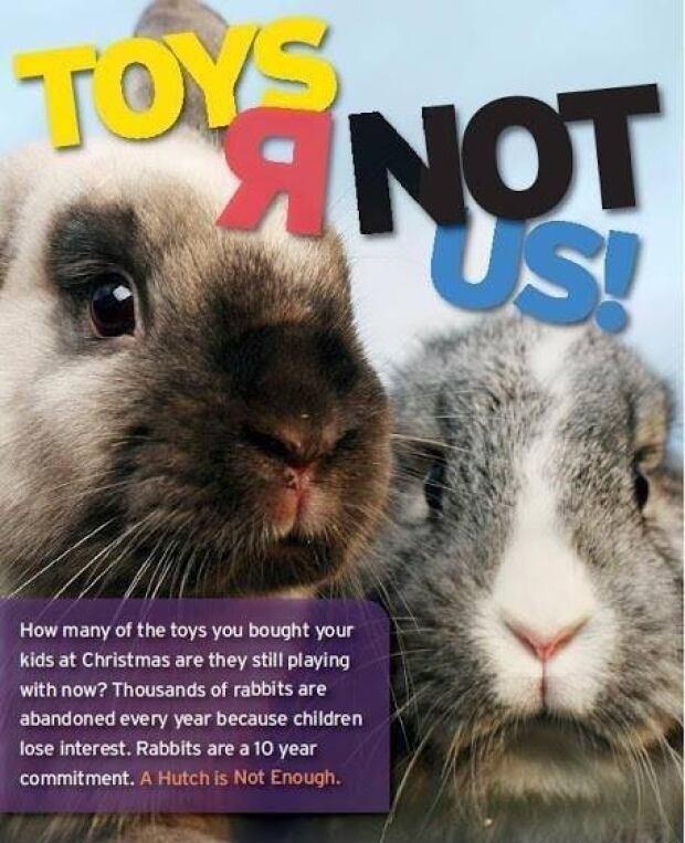 Rabbit ad