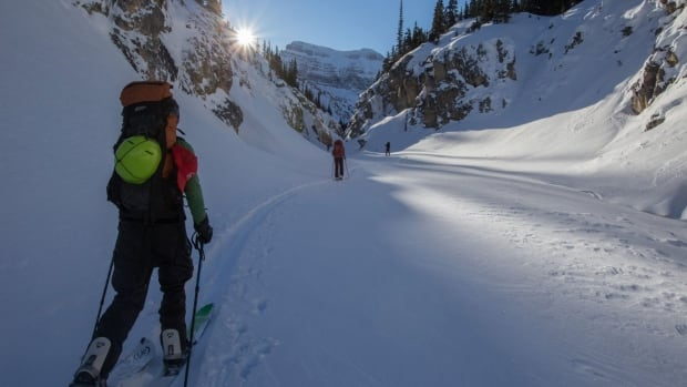 Backcountry skiers make their way through a canyon en route to Bow Hut in Banff National Park in this photo from January 2016.