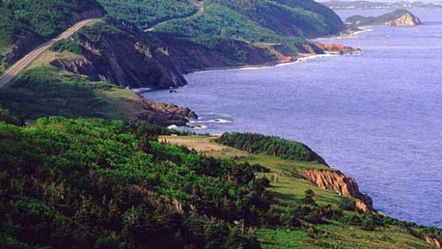Cabot Trail tourism operators want more of their customers to share their photos of the Cape Breton experience online.