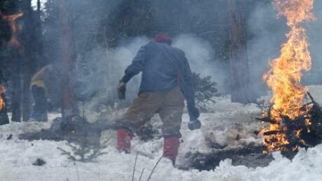 Province-wide slash burning sparks controversy