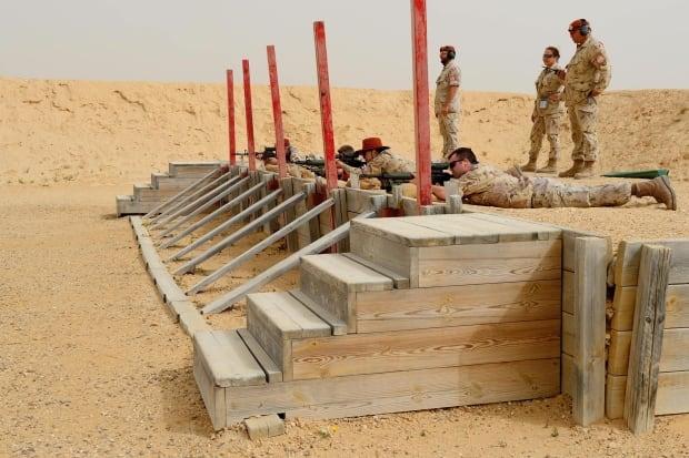 Sinai peacekeepers 2013