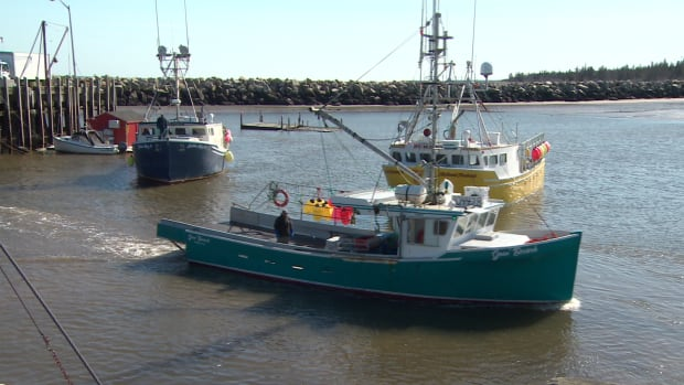 Maritime boat building 39 boom 39 fuelled by lobster industry for Lobster fishing california