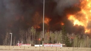 Fort McMurray fire: B.C. woman to drive donations to Alberta herself
