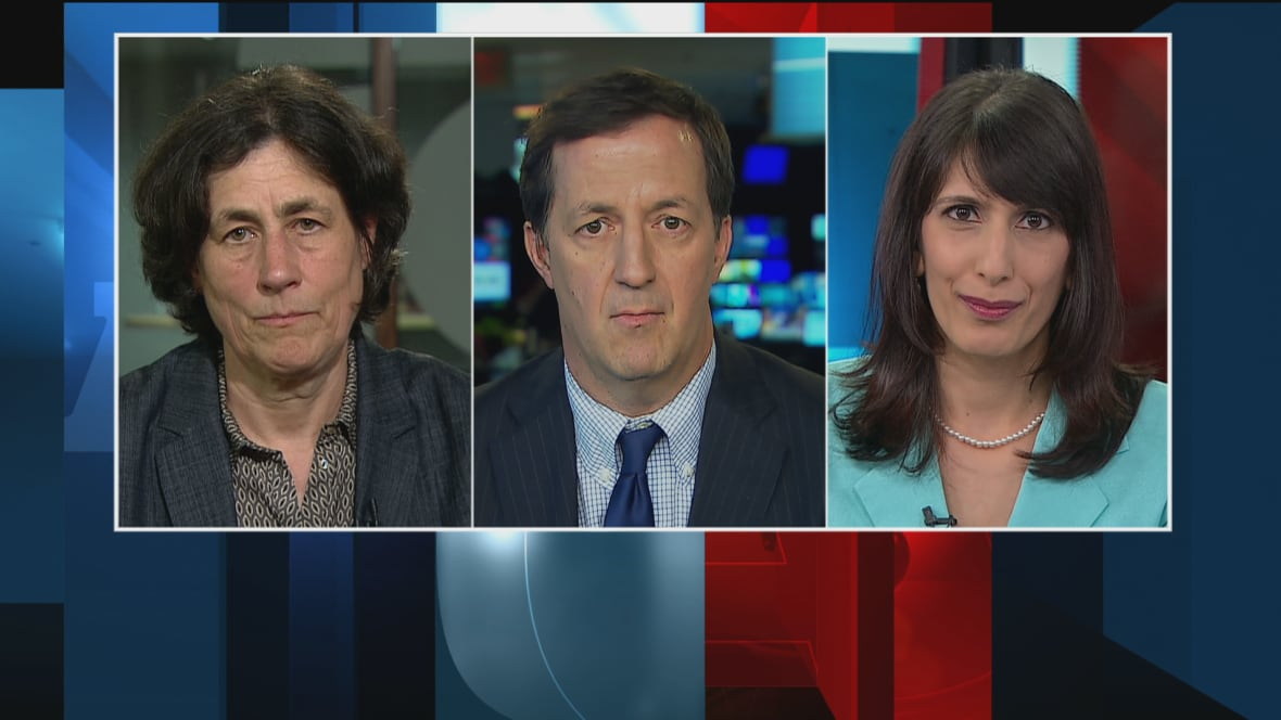 cbc at issue panelists on meet