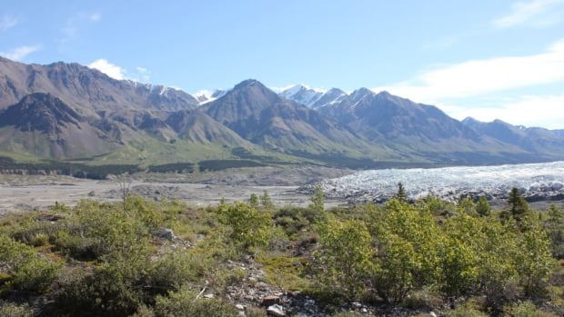 The proposed eco-lodge would be in the Donjek Valley of Kluane National Park in Yukon.
