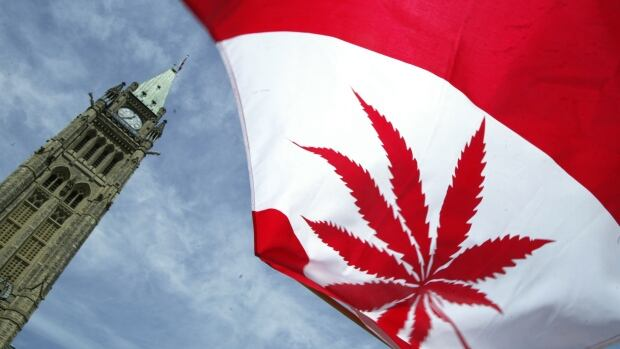 Canada Goose' fake marijuana