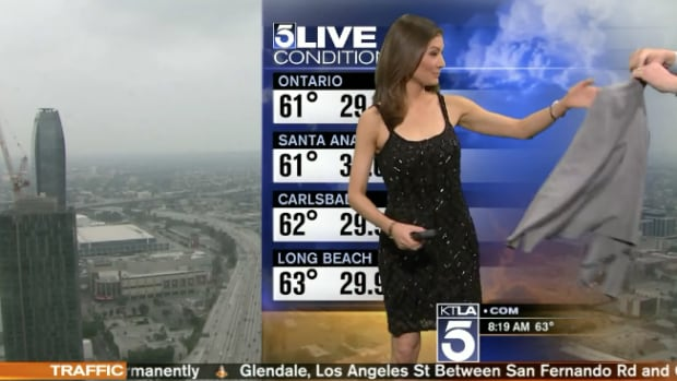 Meteorologist Told To Cover Her Inappropriate Dress With