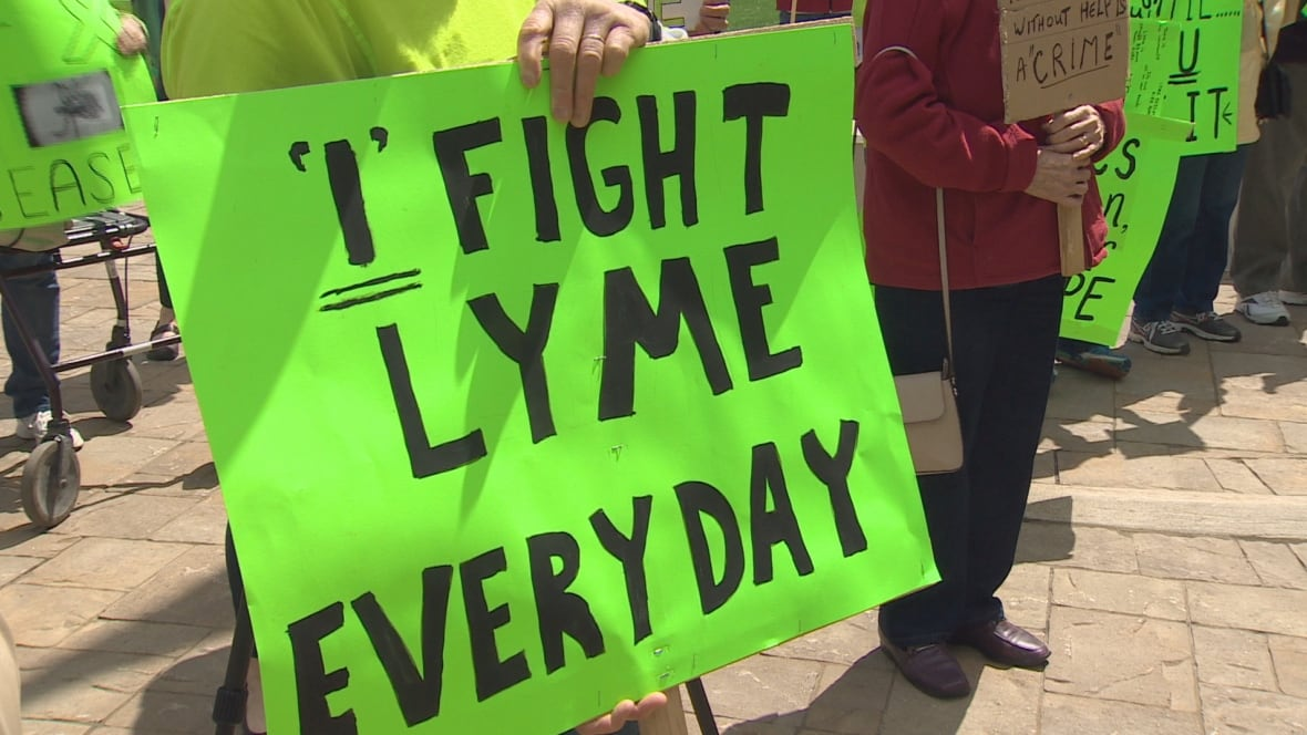 Lyme disease under-reported in New Brunswick say advocates for better care  - New Brunswick - CBC News