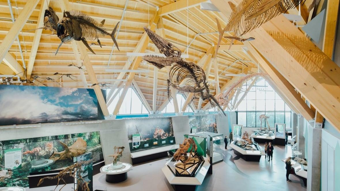 Northwestern Alberta S Philip J Currie Dinosaur Museum
