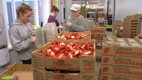 Proposed downtown arterial puts Vancouver's 'Produce Row' at risk