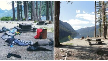 Students shamed for 'appalling' Harrison Lake campsite mess