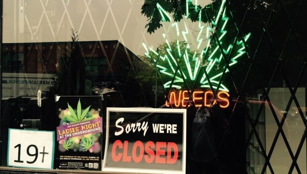 Toronto police raid pot shops
