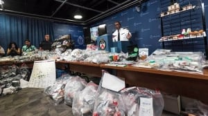 Toronto police show off haul from pot raids