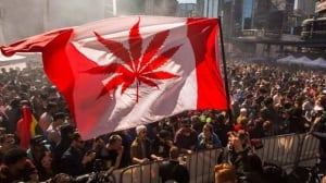 Regulating marijuana in Canada