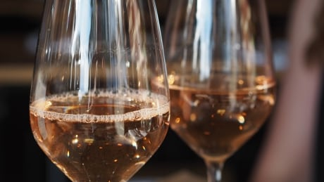 Rosé wines coming to store shelves and 2015 was a good year