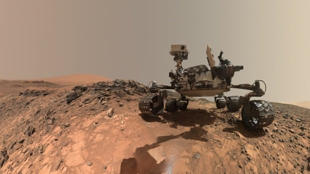 This low-angle self-portrait of NASA's Curiosity Mars rover shows the vehicle at the site from which it reached down to drill into a rock where the tridymite was found.