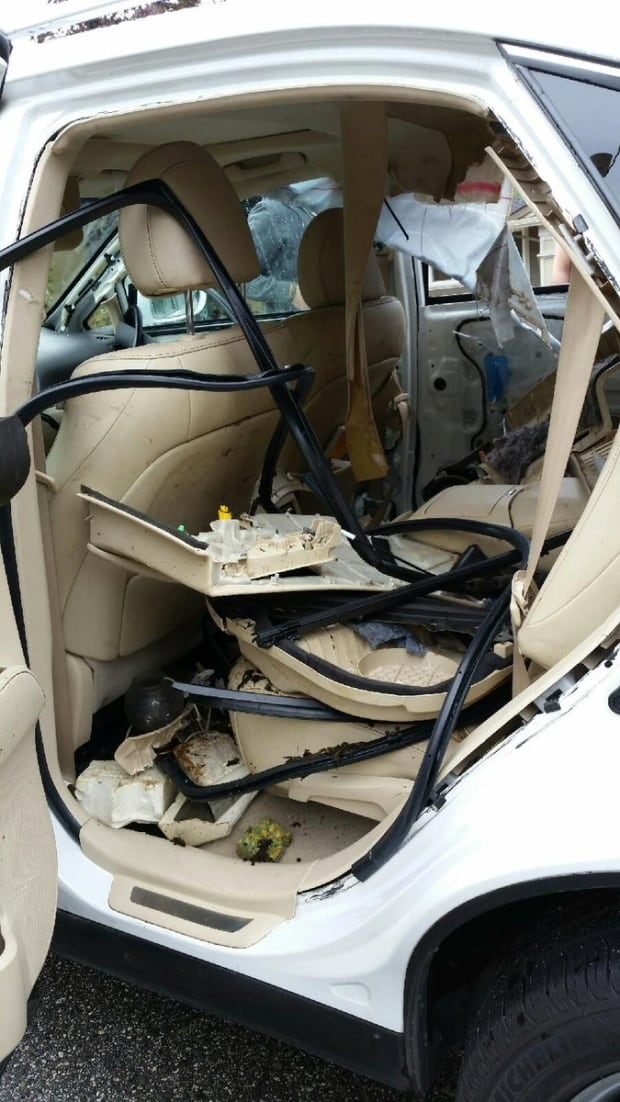 bear breaks into car to eat protein bars british columbia cbc news. Black Bedroom Furniture Sets. Home Design Ideas