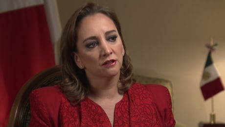 Donald Trump's anti-Mexican talk offensive, worrisome, Mexican official says
