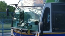Regina - Buses - Regina Buses - Transit - Public Transport - Summer Bus