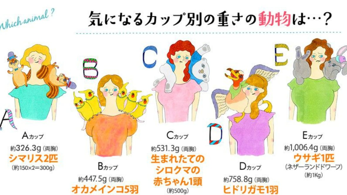 B-cup bra? That's like carrying around five cockatiels ... C Cup Vs D Cup Comparison