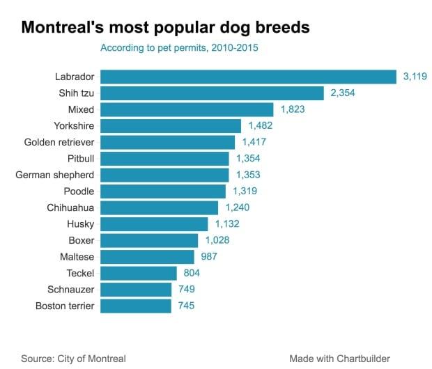 Most aggressive dog breeds chart
