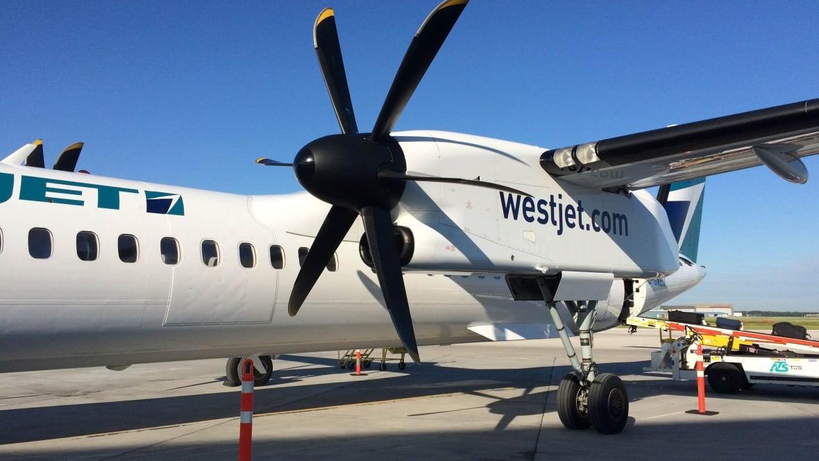 Push To Unionize Westjet Flight Attendants Underway