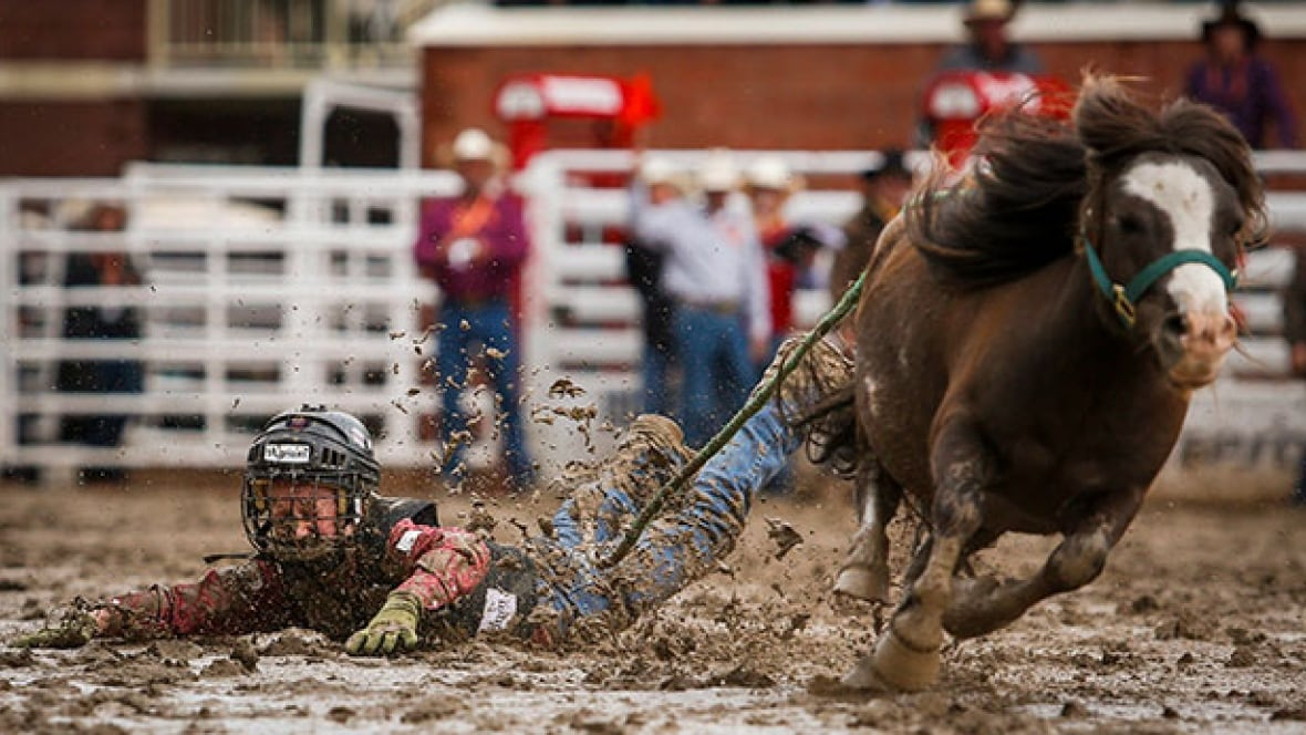Lessons From A Calgary Stampede Rookie 2016 Calgary Stampede Cbc Sports