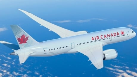 Air Canada airline fees